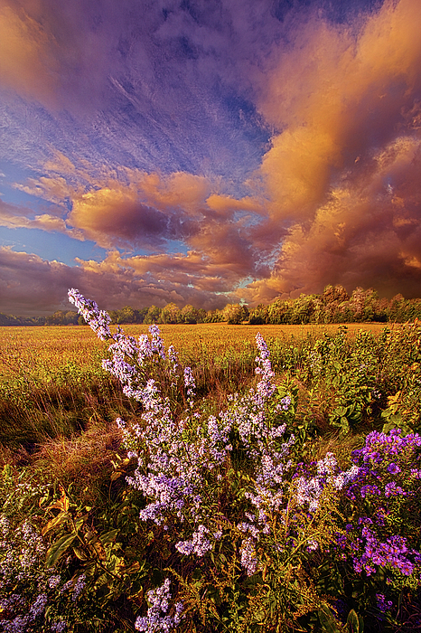 Not Every Journey Has An End by Phil Koch